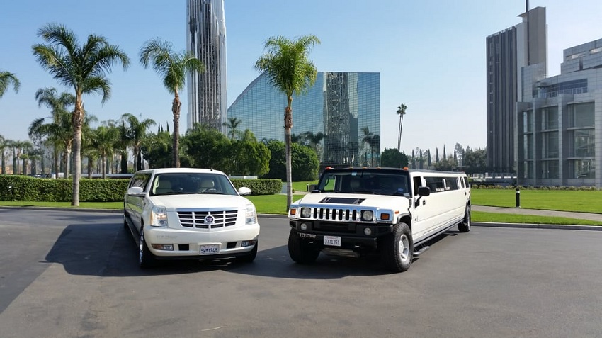 Booking a Limousine Service: 5 Questions You Should Ask First