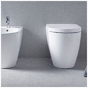 What do you look for in a new toilet?