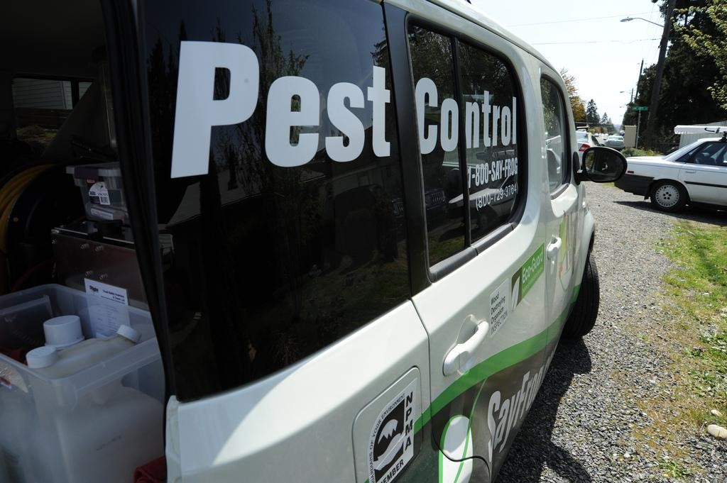 Do you live in one of the UK's most pest infested areas?