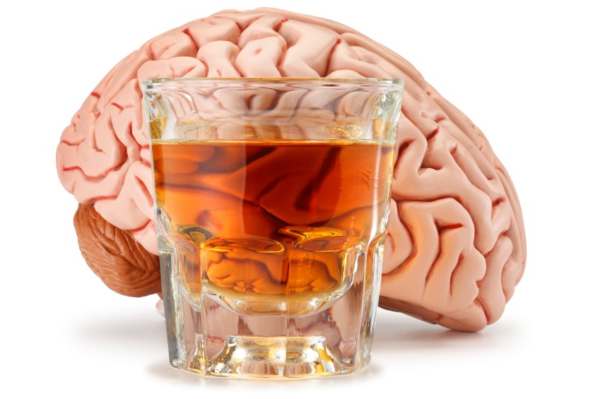 Things that alcohol does to the brain