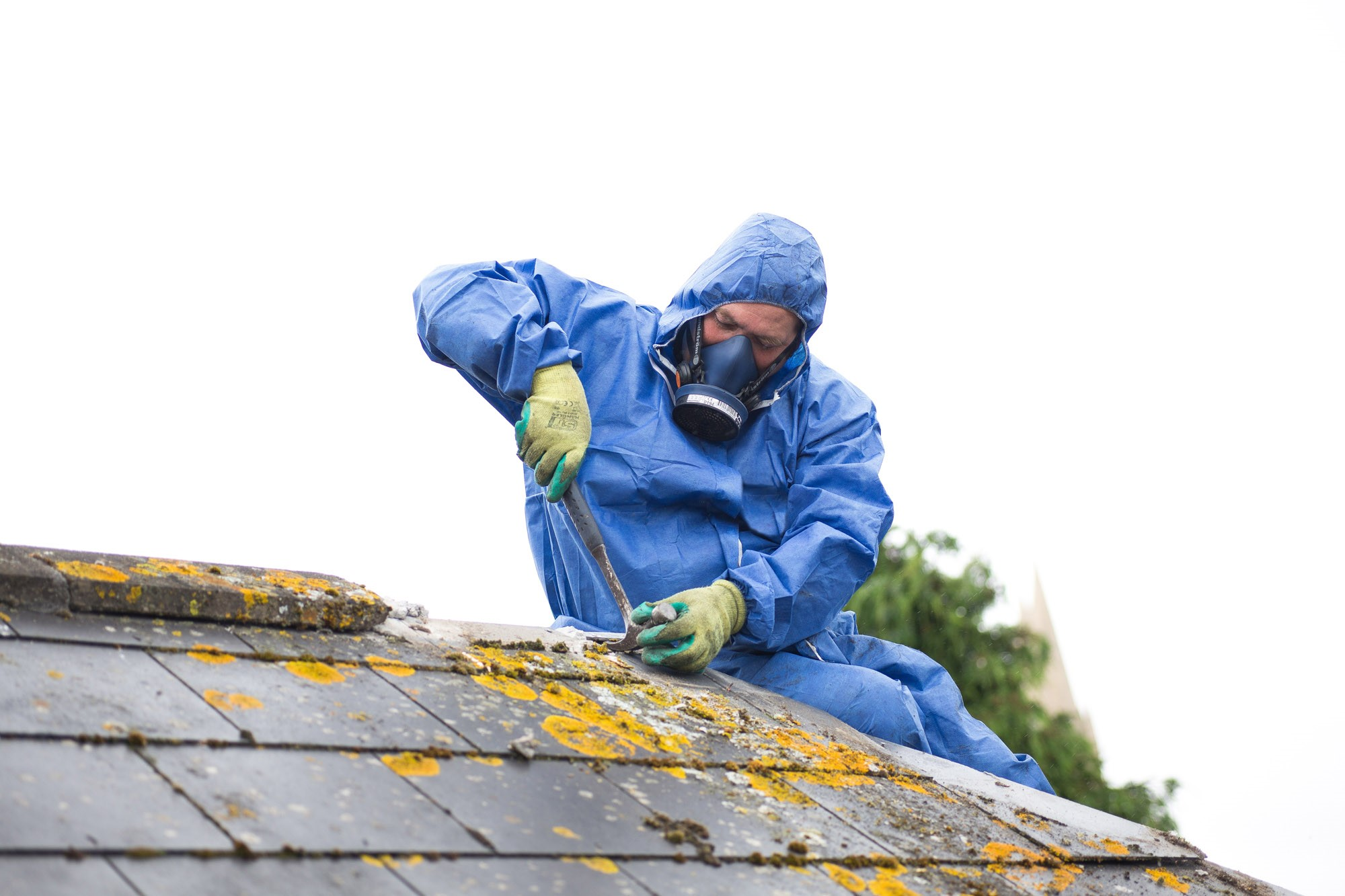 How to choose the right asbestos consultant?