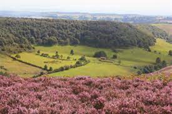 Three Walks you Will Love in North Yorkshire