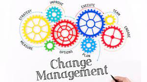 What Are The Main Principles Of Change Management?